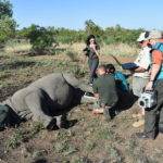 X-rays in the veld